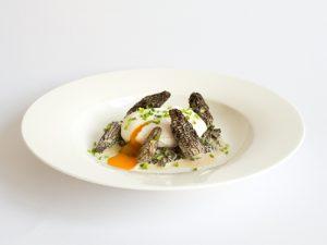 Pochiertes Ei mit Morcheln in Crème fraîche