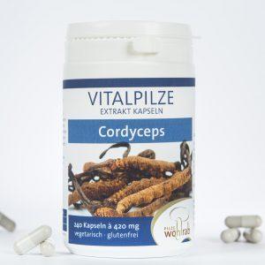 Cordyceps sinensis Extraktkapseln.