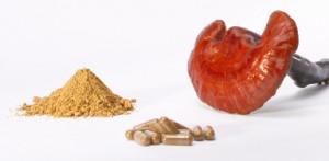 VItalpilz Reishi: Fruchtkörper, Pulver und Pulverkapseln