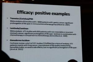 Forschungsergebnisse dargestellt auf der International Medicianl Mushroom Conference 2013 in China