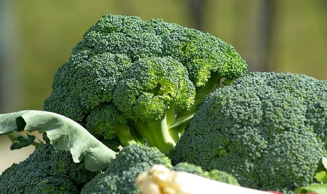 Vitamin K findet sich vor allem in grünem Gemüse, aber auch in Pilzen.