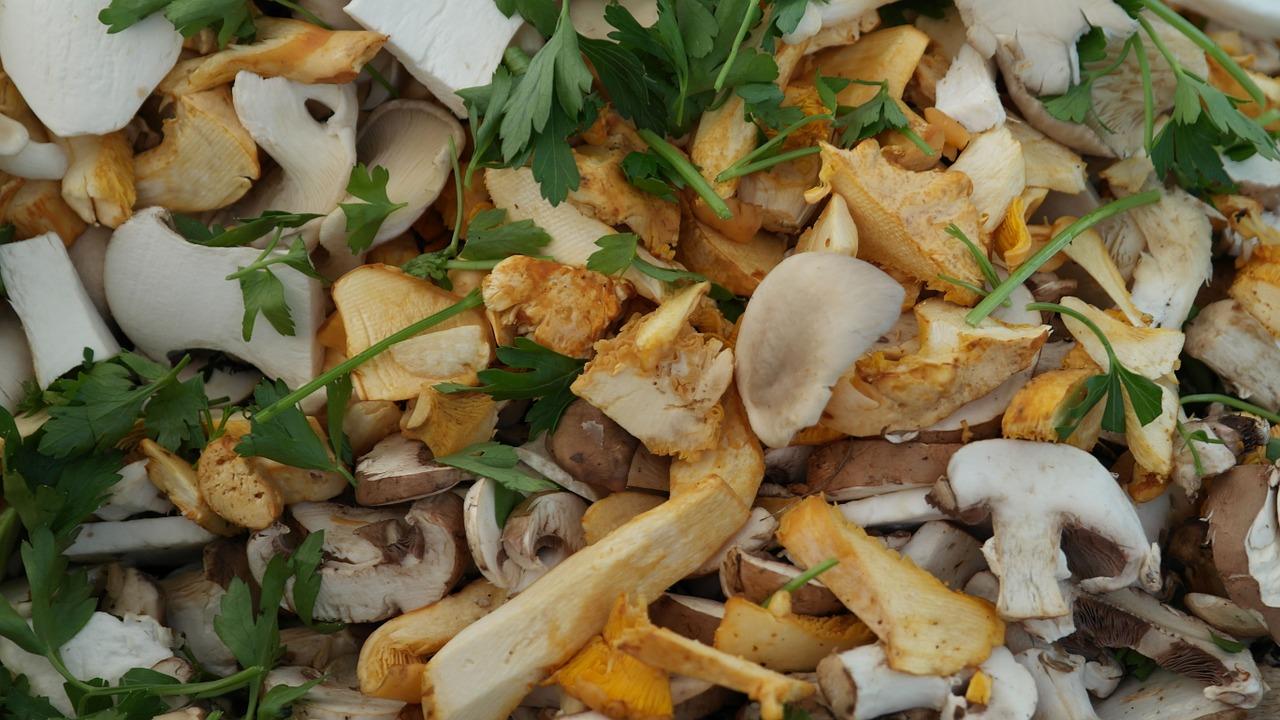Pilze enthalten das Spurenelement Kupfer.