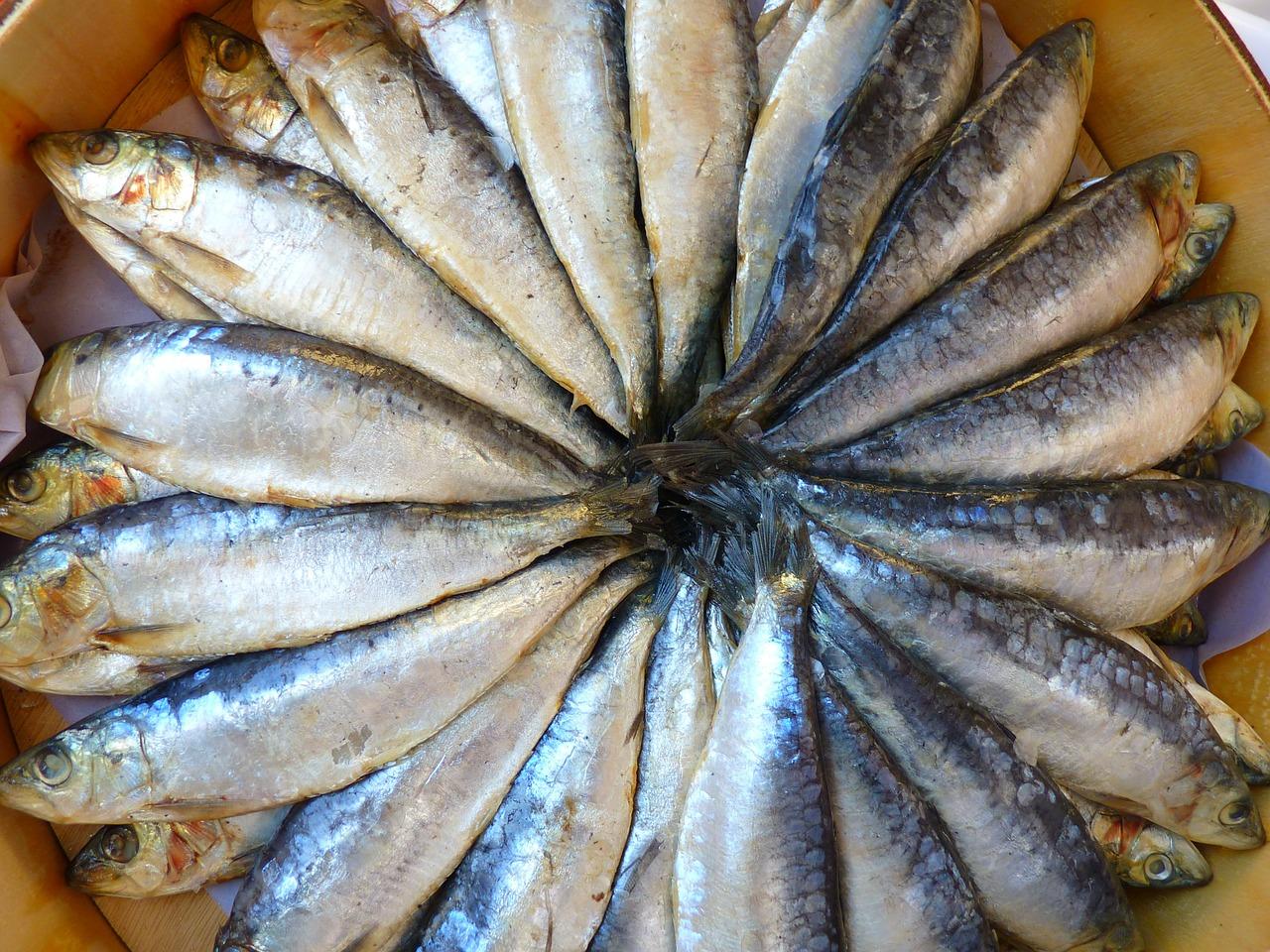 Fisch als Quelle von Pantothensäure