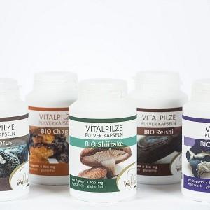 Eine Auswahl an Vitalpilzen der Firma Pilze Wohlrab.