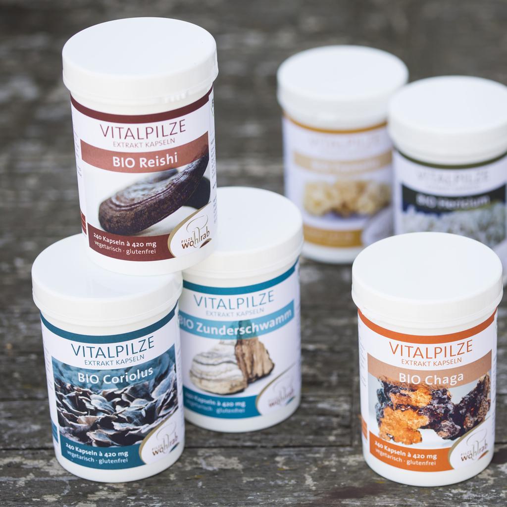 Eine Auswahl von Vitalpilzen der Firma Pilze Wohlrab