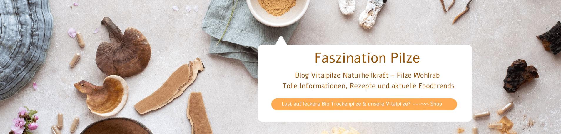 Vom Vitalpilze Blog zum Shop