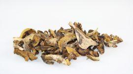 Getrocknete Pilze von Pilze Wohlrab