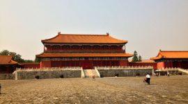 China – im Land der tausend (Vital-)Pilze