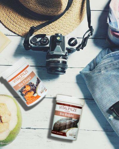 Fünf Vitalpilze für Ihren Urlaub