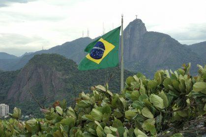 Gesundes aus Brasilien